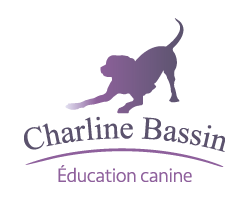Charline Bassin - Education Canine